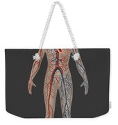 Circulatory System In Female Anatomy Weekender Tote Bag