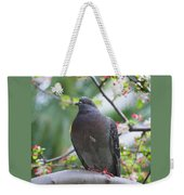 City Bird Weekender Tote Bag