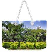 City Park New Orleans Louisiana Weekender Tote Bag