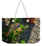 City Snail From Above Weekender Tote Bag