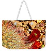 Claret Cup Cactus On Panther Junction Nature Trail In Big Bend National Park-texas Weekender Tote Bag
