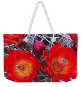 Claretcup Cactus In Bloom Wildflowers Weekender Tote Bag