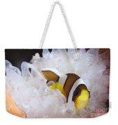 Clarks Anemonefish In White Anemone Weekender Tote Bag