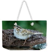 Clay-colored Sparrow Spizella Pallida Weekender Tote Bag