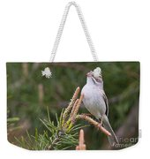 Clay-coloured Sparrow Pictures 35 Weekender Tote Bag