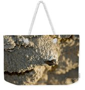 Cliff Swallow About To Fledge Weekender Tote Bag