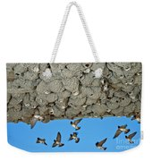 Cliff Swallows Returning To Nests Weekender Tote Bag