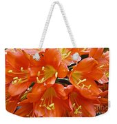 Music Please Clivia Weekender Tote Bag