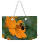 Close Up Bee Feeding On Orange Cosmos Weekender Tote Bag