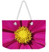 Close Up Of A Cosmos Flower Weekender Tote Bag