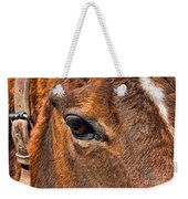 Close Up Of A Horse Eye Weekender Tote Bag by Paul Ward
