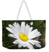 Close Up Of A Margarite Daisy Flower Weekender Tote Bag