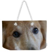 Close Up Of A Pet Dogs Eyes Weekender Tote Bag