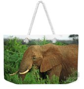 Close Up Of African Elephant Weekender Tote Bag