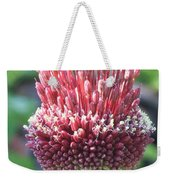 Close Up Of An Ornamental Onion Or Drumstick Allium  Weekender Tote Bag