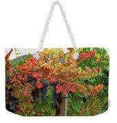Close-up Of Cabernet Sauvignon Grapes Weekender Tote Bag