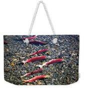 Close-up Of Fish In Water, Sockeye Weekender Tote Bag