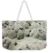 Close Up Of Lichens Commonly Called Rock Moss Weekender Tote Bag
