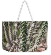 Close Up Of Long Cactus With Long Thorns  Weekender Tote Bag