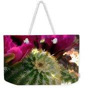 Close Up Of Pink Cactus Flowers Weekender Tote Bag