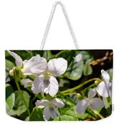 Close-up Of White Violets  Weekender Tote Bag