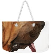 Close Up Portrait Of A Bloodhound Weekender Tote Bag