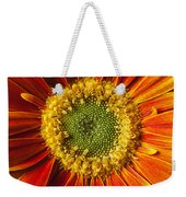 Close Up Yellow Orange Mum Weekender Tote Bag