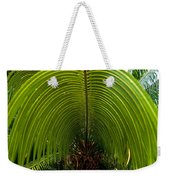 Closeup Of A Palm Tree Leaf Weekender Tote Bag