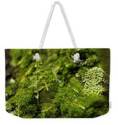 Closeup Of Moss And Lichen. Rhoen Weekender Tote Bag