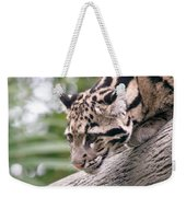 Clouded Leopard Cub Weekender Tote Bag