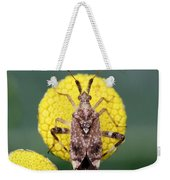 Clouded Plant Bug On Tansy Weekender Tote Bag