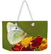 Clouded Sulphur Butterfly Weekender Tote Bag