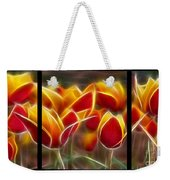 Cluisiana Tulips Triptych  Weekender Tote Bag by Peter Piatt