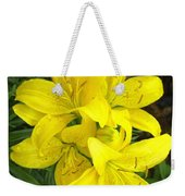 Cluster Of Yellow Lilly Flowers In The Garden Weekender Tote Bag
