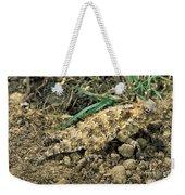 Coast Horned Lizard Weekender Tote Bag
