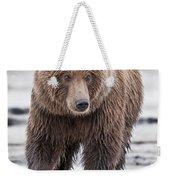 Coastal Brown Bear A Walk On The Beach Weekender Tote Bag