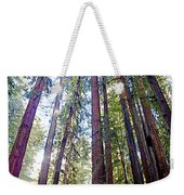 Coastal Redwoods Reach For The Sky In Armstrong Redwoods State Preserve Near Guerneville-ca Weekender Tote Bag