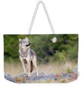 Coastal Wolf Weekender Tote Bag