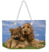 Cocker Spaniel And Pomeranian Weekender Tote Bag