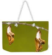 Cocooned Gulf Fritillary Butterflies Weekender Tote Bag