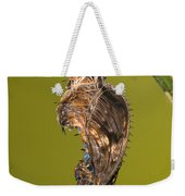 Cocooned Zebra Longwing Butterfly Weekender Tote Bag