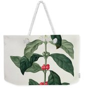 Coffea Arabica From Phytographie Weekender Tote Bag