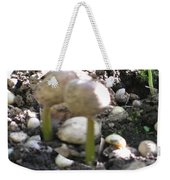 Coffee Beans Soldier  Stage One Of The Seed Giving Birth To A Cash Crop Plant Tree In Costa Rica Weekender Tote Bag