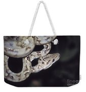 Coiled And Waiting Weekender Tote Bag
