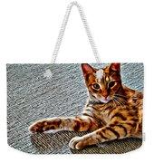 Cole Kitty Weekender Tote Bag