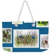 Collage Of Dauphin Island 22 Weekender Tote Bag
