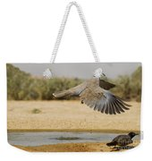 Collared Dove  Weekender Tote Bag