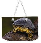 Colombian Wood Turtle Amazon Ecuador Weekender Tote Bag