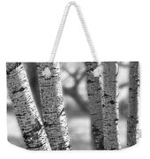 Colorado White Birch Trees In Black And White Weekender Tote Bag
