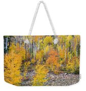 Colorful Autumn Forest In The Canyon Of Cottonwood Pass Weekender Tote Bag